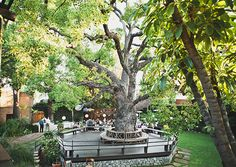Monster List of Pasadena Wedding Venues. (Pictured: Happy Trails Garden and Catering).