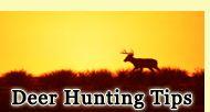 10 Preseason Deer Hunting Tactics