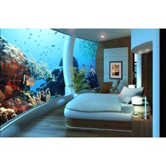 Fish tank bedroom
