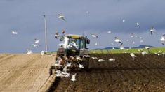 Image copyright Getty Images Image caption Rural Economy Secretary Fergus Ewing highlighted the need to maintain support for hill farmers in ScotlandThe Scottish government has welcomed plans for post-Brexit farming funds, but says there are still too many unanswered questions for Scotland.