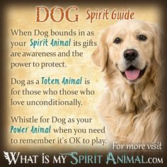 Dog Symbolism & Meaning | Spirit, Totem, & Power Animal - Pinned by The Mystic's Emporium on Etsy