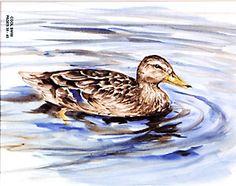 480 Enjoy Watercolor by Susan Scheewe Brown