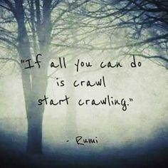 """If all you can do is crawl start crawling."" - Rumi"