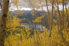 Golden aspens mask the view of Goose Pasture Tarn near Breckenridge, Colorado. Photo by Jessie Unruh