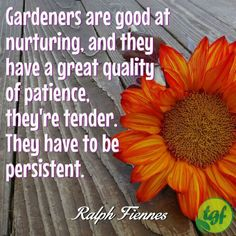 Gardeners are good at nurturing and they have a great quality...