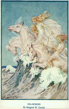 Riding the hippocampus - the sea-horses...