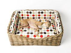 Charley Chau Dressed Greywash Rattan Dog Basket in Great Spot