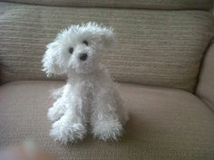 Pocket Puppy - via @Craftsy--OMG this looks like my little dog Romeo when he is not in his show cut.