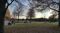 A Walk in the Park by D.L.Tharpe Photography
