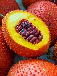 Fruit Plants, Tall Plants, Fruit Garden, Live Plants, Tropical Plants, Fruit Trees, Exotic Fruit, Plant Sale, Landscaping Plants