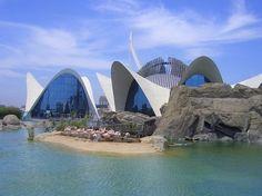 ¿Vas a visitar Valencia? Te recomendamos que mires antes los descuentos y promociones de Valencia que aparecen en MasCupon para hacer la visita más barata.  #Valencia #promociones #descuentos #viajes #España #turismo #Valenciaenamora