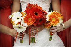 Wedding, Flowers, Bouquet, Orange, Blue, Bridesmaid, Brides, Dazzling bouquets - Project Wedding