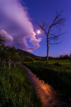 ~~Moonlight Meadow ~ Star Valley, Wyoming by Chad Dutson~~
