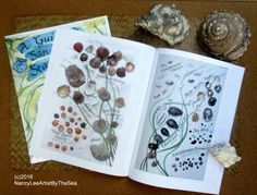 An artist's life by-the-sea In San Diego. Watercolors, art journals, nature photography & brush painting.