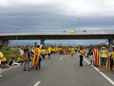 Via catalana trams 213 i 214