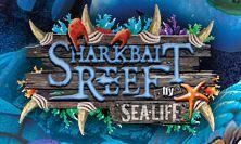 Theme Park Sharkbait Reef at Alton Towers