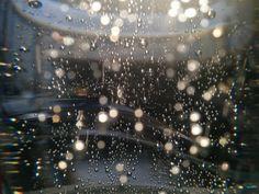 Bubbles in sunlight: Motion of carbonated gas under sunlight inside a semi-open bottle of sparkling water. Captured in Berlin using the built-in camera of a Google Nexus 5p. —Gauri Mangalgiri, Helmholtz Zentrum Berlin
