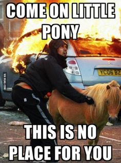 Come with me little pony!