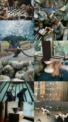 Ravenclaw in Autumn Autumn Aesthetic, Witch Aesthetic, Aesthetic Collage, Character Aesthetic, Ravenclaw, Writing Inspiration, Color Inspiration, Lexa Y Clarke, Autumn Cozy