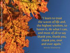 Taken at Little Beaver Lake in WV. I love the contrast of the sun shining through the fall leaves against the bright, blue sky. Grateful to be out walking with my mom! Learning To Trust, Graphic Quotes, Fall Leaves, Grateful, Best Quotes, Contrast, Walking, Wisdom, Graphics