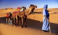 Morocco (ALREADY PINNED ON MAGICAL MOROCCO BOARD)