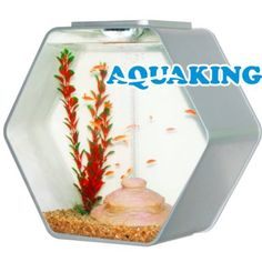 Aquario AA Deco-Hexo 15L Acrilico Led - Prata - 380x185x350 - 110v