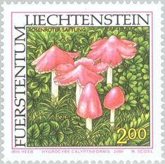 Stamp: Hygrocybe caylptriformis (Liechtenstein) (Mushrooms) Mi:LI 1254,Sn:LI 1195,Yt:LI 1195,Zum:LI 1197