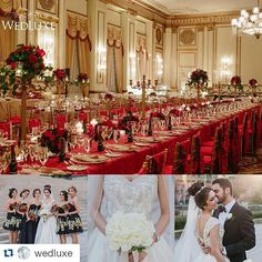 nice vancouver florist #Repost @wedluxe ・・・ New on WedLuxe.com: a rich #red and #gold #wedding with a decidedly #royal feel (photography: #opheliaandromeophotographers, planning: @filosophi, #floral: @vancouverflower, #decor: @uprightdecor, venue: @fairmontvan) #redwedding #goldwedding #luxurywedding #persianwedding #wedluxe  #vancouverflorist #vancouverwedding #vancouverweddingdosanddonts