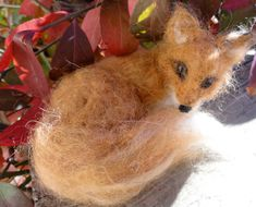 This red fox is all cuddled up and taking a nap with his fluffy tail for a pillow.  This fox was inspired by photos of beautiful red foxes. The fox is created from a variety of wool including soft wools including alpaca. The wool was hand-dyed or natural toned. This fox has black legs and a soft, white, furry tummy.  This little fox measures about 4 inches in diameter. This fox would be a beautiful addition to any nature scenery.  This fox is in my collection, but I can make a CUSTOM twin…