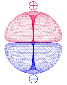 human double torus magnetic field | Double-Torus | HOMO SOLARIS