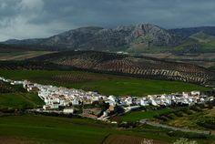#Serrato es desde diciembre de 2014 el pueblo número 103 de la provincia de Málaga. Situado en la Serranía de Ronda, se caracteriza por la abundancia de agua en sus inmediaciones, siendo el aporte principal del Pantano de Guadalteba. Celebra dos festividades anuales: el Día de la Vieja (en marzo) y el de Nuestra Señora del Rosario (7 de octubre).