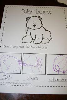 Draw 3 things polar bears do