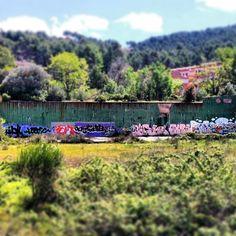 #Grafiti a la natura #Gelida #Penedes
