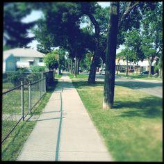 My Neighbourhood.