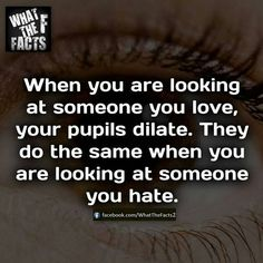 Fun. So if you see someone's pupils dilated while looking at you, they're either high, love you, or hate you? Have fun figuring that one out, I guess!