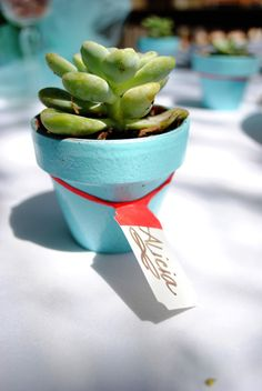 July Moon Inspirations - potted suculents as placecards
