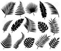 Botanisches Tattoo, Leaf Tattoos, Stencil Painting On Walls, House Painting, Stencil Designs, Paint Designs, Leaf Silhouette, Hawaiian Art, Tropical Leaves