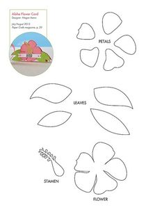 Free Tropical Flower pattern/template