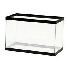 2.5-Gallon Aquarium Black 12X6X8, All Glass -- FREE SHIPPING TO 48 STATES -- The All-Glass Standard Size Aquarium Is Made With Care To Assure That It Can Stand Up To Almost Any Application.  These Aquariums Come In A Wide Range Of Sizes As Well As Black And Oak Trim Styles.  Large Aquariums Feature One-piece Center-Braced Frames That Eliminate Glass Bowing.