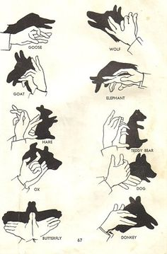 shadow puppets....YES new animal shadow to do with the kids!!