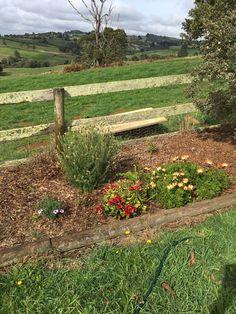 Stepping Stones, Vineyard, Garden, Outdoor Decor, Home Decor, Stair Risers, Garten, Decoration Home, Room Decor