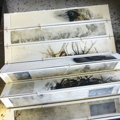 Sketch Book tracemarks: my bird book .Lovely, understated watercolors in an unusual binding/format. Kunstjournal Inspiration, Sketchbook Inspiration, Art Sketchbook, Concertina Book, Accordion Book, Buch Design, Bird Book, Artist Journal, Book Sculpture