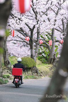 Japanese mailman