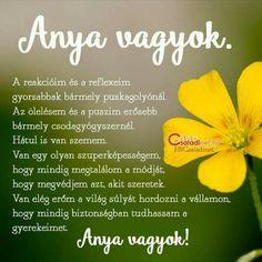 Good Sentences, Minion, Life Quotes, Van, Quote Life, Quotes About Life, Living Quotes, Vans, Minions