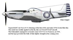 The squares you're talking about are from ancien Checkertail markings, Fighter Group. Ww2 Aircraft, Military Aircraft, Air Fighter, Fighter Jets, Motorized Big Wheel, Fighting Plane, Thunderbolt And Lightning, P51 Mustang, Aircraft Pictures