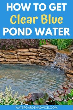 Clear blue pond water is something that all backyard pond owners dream of. Here's how to get beautiful blue water in your garden pond. pond How To Get Clear Blue Pond Water Landscape Lighting Design, Diy Pond, Indoor Garden, Garden Ponds, Backyard Ponds, Water Falls Garden, Outdoor Fish Ponds, Backyard Waterfalls, Outdoor Fountains