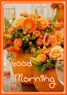Good Morning Nature, Good Morning Coffee, Good Morning Greetings, Good Morning Good Night, Good Morning Wishes, Good Morning Quotes, Sunday Wishes, Morning Blessings, Morning Images
