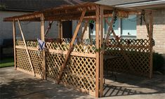 Cheap and easy sukkah plans