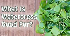 Compounds in watercress have been shown to decrease the risk of lung, colorectal, and prostate cancers, and a particularly virulent form of breast cancer. http://articles.mercola.com/sites/articles/archive/2016/05/02/watercress-healing-benefits.aspx