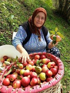 Apple Season, Apple Harvest, Baba Yaga, Winter Scenery, 10 Picture, World View, Ways Of Seeing, Apple Tree, Happy Moments